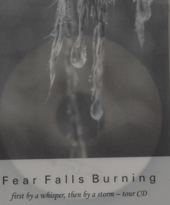 Fear Falls Burning tour CD